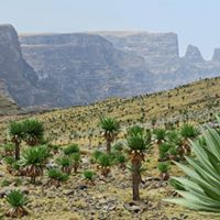 4 days-ethiopia trekking and hiking tour ittenerary-lungo local tour Ethiopia