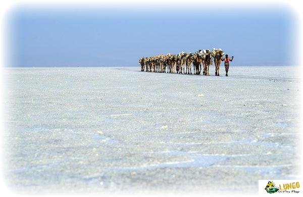 3 days-itinerary Danakil depresstion Ethiopia|Lungo local tour Ethiopia