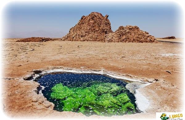 6 days-itinerary Ertale and Danakil depression Ethiopia|Lungo local tour Ethiopia