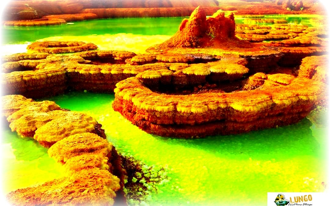 15 days-itinerary Ertale and Danakil depression Ethiopia|Lungo local tour Ethiopia
